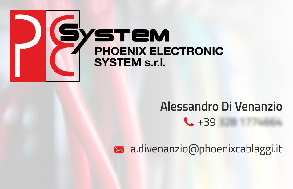 biglietto_phoenix_electronic_system1